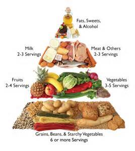 Food Groups Tree With Servings Needed Per Day