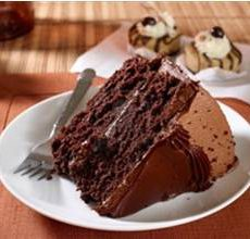 Katz Gluten-Free Chocolate Fudge Cake Mix