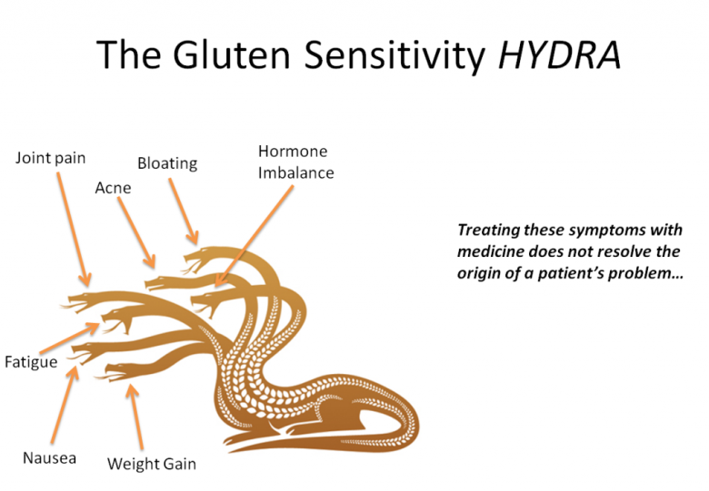 The Gluten Sensitivity HYDRA
